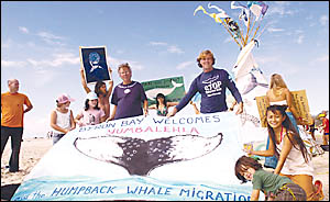 Howie Cooke (centre) and Dean Jefferys hold a flag on Main Beach, Byron Bay, for the national Day of Action for Whales on Satur