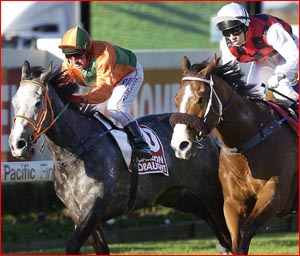 Toowoomba s Gold Edition runs second to Takeover Target in the recent Doomben 10,000.