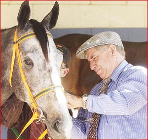 Trainer Ron Maund and stable foreman Neville Saunders (obscured) saddle Toowoomba filly Gold Edition.