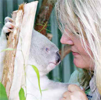 Gail Gipp, manager of the Australian Wildlife Hospital, based at Australia Zoo,  with one of her favourite wildlife friends, Sam the blind koala.