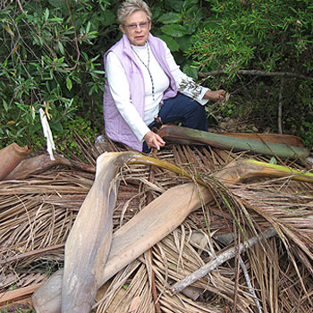 Noosa councillor June Colley is furious over the dumping of a huge pile of palm fronds in a bushland park in Tewantin.