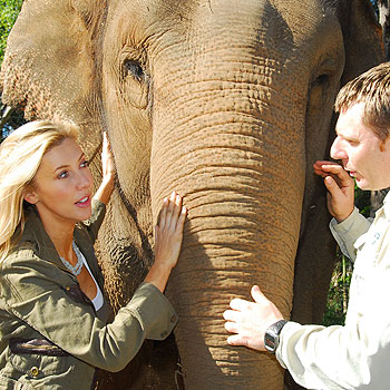 Many years ago, well before her Getaway fame, Catriona Rowntree took a tour of the croc pens at Australia Zoo on director Wes Mannion's back.
