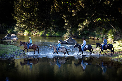 Horses crossing the Mary River