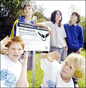WARY: Lismore Public School students (from left), Matt Parmenter (12), Reid Gough (12), Sid Sommerfield (11), Chey Hosie (12),
