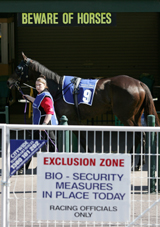 Barricades and signs are placed around the track as racing resumed after the EI outbreak at Caulfield racecourse, September 1.