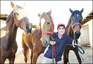 Ballina trainer Jerome Hunter with Melbourne Cup runner Blutigeroo (centre), pictured with former stablemates River Sauvage (le