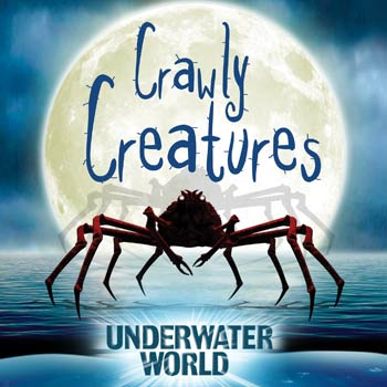 Come face to face with the world's largest crabs and other 'skin crawling' creatures at UnderWater World.