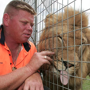Lennon's circus tent boss and animal trainer Steve Lavis gets up close to his big cat, Kovu. Photo: Barry Leddicoat/171352a
