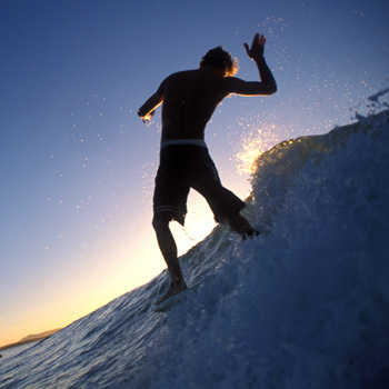 Surfart is on at the Noosa Regional Gallery from Sunday February 10.