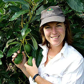 Glasshouse Mountains avocado farmer Ros Smerdon has taken out the 2008 RIRDC Rural Women's Award. (contributed pic)