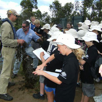 Tewantin State School Wetland Field Day saw 100 students become apprentice wetland managers for a day.