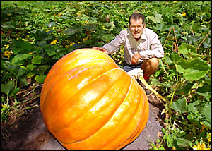 John Mills, of Brunswick Wholesale Plants, proudly shows off what could be the only giant North Coast pumpkin to survive the bi