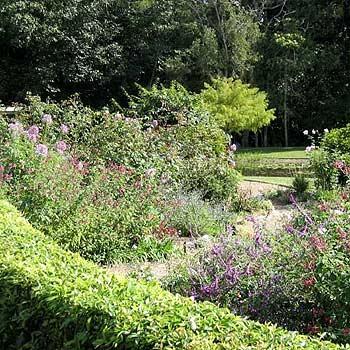 The Buderim garden belonging to Rex and Barbara Wickes was featured as part of Australia's Open Garden Scheme.