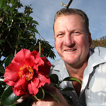 Matthew Howard has been volunteering at the Maleny Show for the past 25 years and is hoping to take out a prize in the flower competition with one of his Bob Hope camellias. Photo: Michaela O'Neill/174990