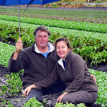 Steve and Sue Dipple at Noosa Valley Market Gardens. Photo: Geoff Potter/N20619