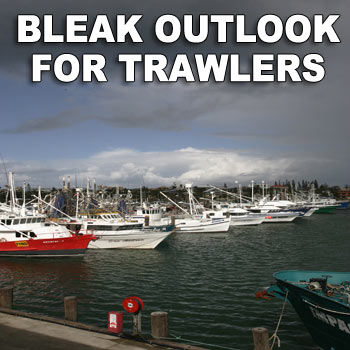 Fishing trawlers return to Mooloolaba with their catch. Photo: Chris McCormack/159701a