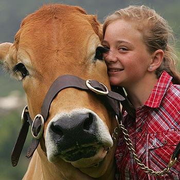 Marissa Holt of Belli Park with and her brahmousin cow Velvet. Photo: Brett Wortman/bw171219j