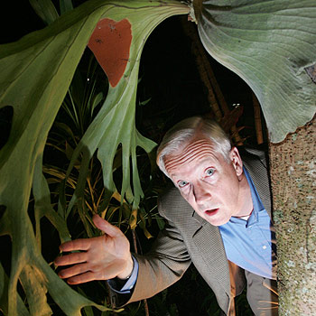 Guest presenter at the combined chambers of commerce function, Graeme Bowman, spoke about lateral thinking and played the part of David Attenborough's long lost brother to illustrate his point. Photo: Brett Wortman/175182