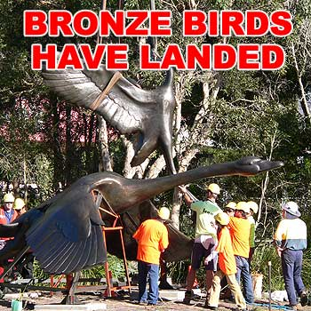 Workers, with the aid of a massive crane, lower the $130,000 sculpture of a black swan and egret into place in Nelson Park at Alexandra Headlands. Photo: courtesy of Sunshine Coast Regional Council.