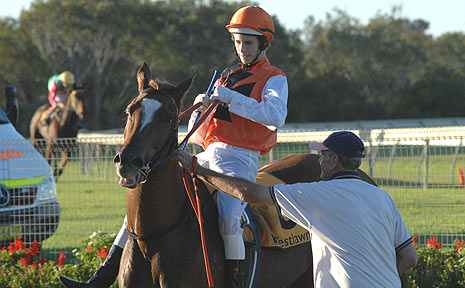 Joshua Jones in the mounting enclosure during a Ballina Jockey Club race meeting last month.