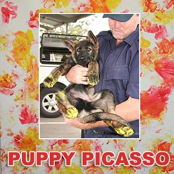 Police puppy Edge (pictured with a handler) has lent a paw to create an artwork for an auction.