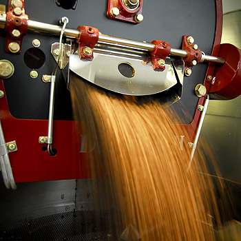 Coffee is processed at Signature Roasters' Kunda Park factory. Photo: Che Chapman/175467