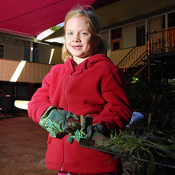 Sophie Thompson, 7, helps in the garden during the working bee at Palmwoods State School. Photo: Che Chapman/177004