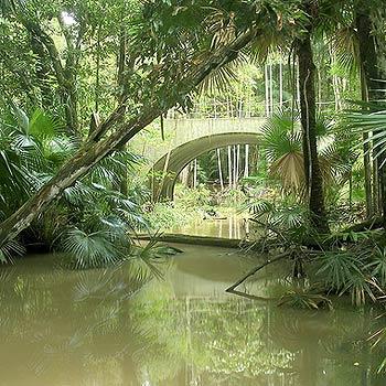 The Maroochy Bushland Botanic Gardens.