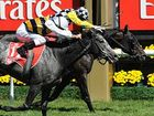 Bart Cummings-trained Viewed has won the Melbourne Cup in a photo finish.