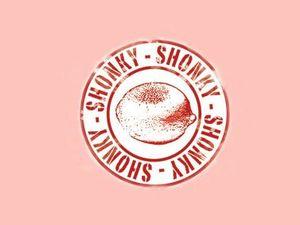 Dodgy dummies take Choice's Shonky Awards