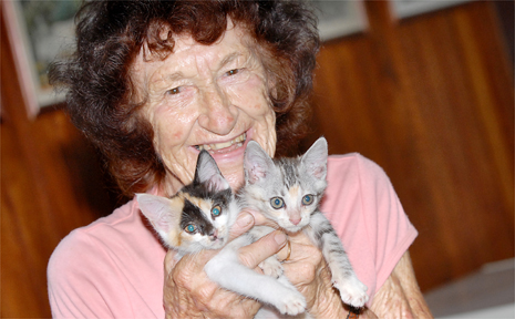 RSPCA volunteer Jean Wilkinson believes de-sexing cats should be compulsory to stop unwanted litters.