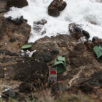 Wheelie bins full of rubbish were tossed 30 metres to the ocean from the Pt Perry lookout.