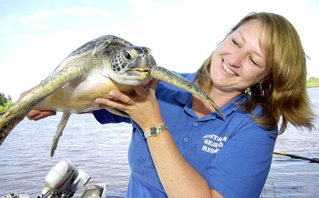 Rochelle Ferris, from Australian Seabird Rescue in Ballina, with a young green sea turtle.