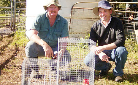 Darryl Rose and Lismore City Council's Nick Stephens at Darryl's Goolmangar property. Darryl has captured nearly 70 Indian mynas using these traps.