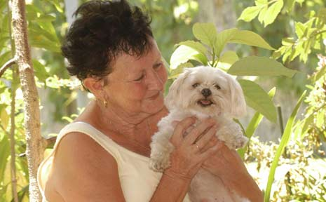 Maree O'Brien, of Casino, has been reunited with her shitzu-Maltese terrier cross, Jasper, after he went missing on New Year's Eve.