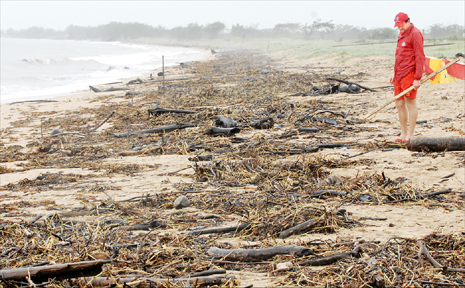 Lifeguard Craig Hallam, of Mackay, inspects the debris which covered Harbour Beach yesterday afternoon.