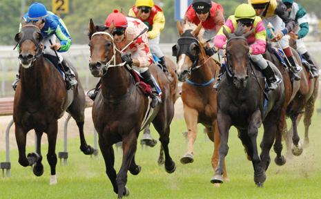 Jockey Scott Thurlow (light pink and stars silks) races Set Alight to victory in race 3 three at Grafton yesterday, Robber Pty Ltd Hcp, 1409 metres.