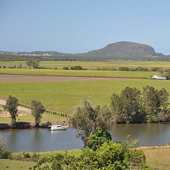 The view from Dunethin Rock looks over caneland and Maroochy River towards Mount Coolum. Photo: Brett Wortman/178881