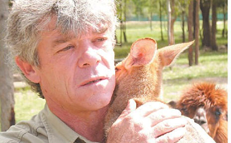 Ray Revill, a former Fraser Island ranger, is devastated by the recent shooting of two dingo pups on the island.