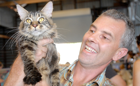 Mark Davey with his cat Hermone, a 12-month-old Maine Coon at yesterday's Mackay Cat Show.
