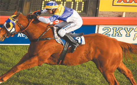 IN DOUBT: Two-times Ramornie Handicap champion The Jackal is in a race against time to be fit for a tilt at a third victory in July.