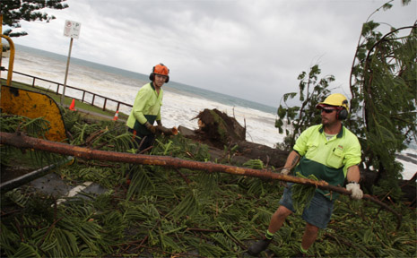 SES workers clear up the debris from old pine trees fallen at Point Danger.