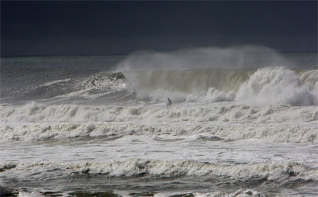 Surfers made the most of the big swell off Maroochydore Beach.