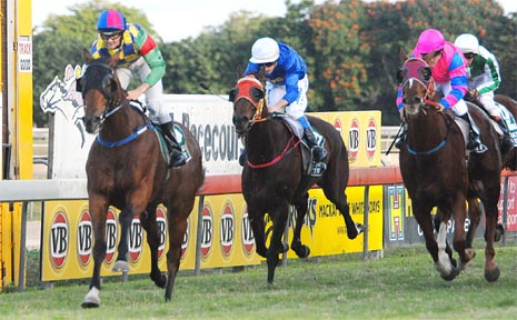 At the track and racing at the VB Midstrength Mackay Amateur Cup Open (1800m) at Ooralea on Saturday.