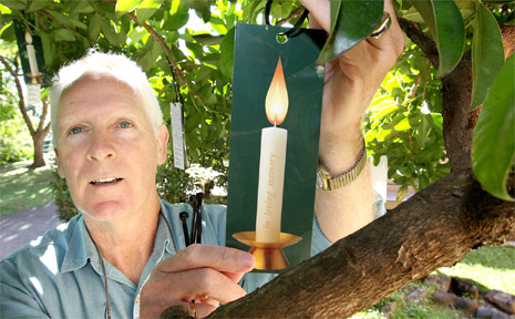 A candle tree has been established at the Murwillumbah District Hospital.