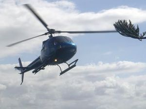Council bans chopper training in Bay and M'boro