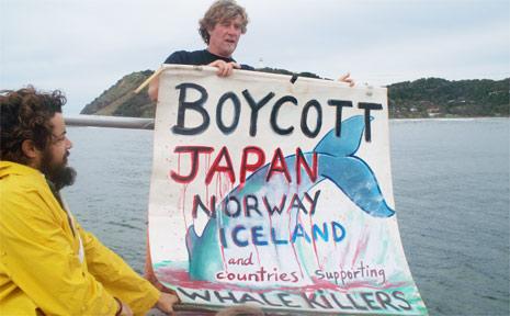 PICTURED is Dean Jefferys unfurling a protest banner on a Whale Watching Byron Bay boast last week.