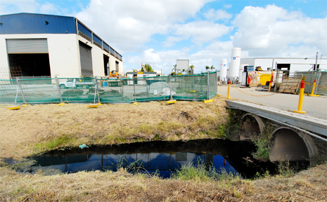 A drain in Paget ran black after sugar cane fertiliser bio-dunder entered the waterway.