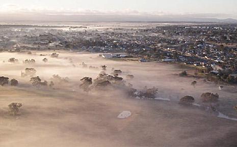 Mist shrouds Federation Park.
