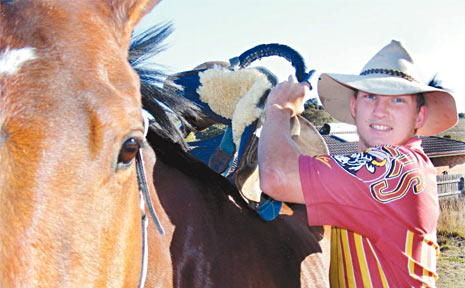 Active wild horse racing competitor David Hallman hopes the wild horse racing will continue at this year's Warwick Rodeo, despite a push from the RSPCA to see it canned from the program.